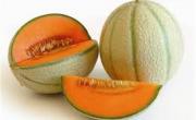 Meloni di Mantova